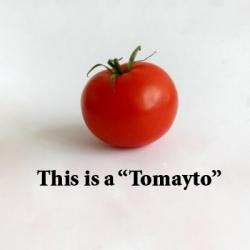 Tomayto tomahto